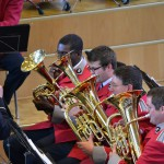 Euphoniums and Baritones Zurich June 2013